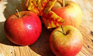 Второй Спас 19 августа называют Яблочным