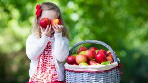 Три Спаса: яблочный, медовый, ореховый - как праздновать