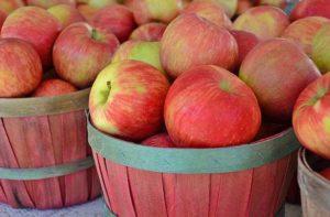 Спас Яблочный: почему спас, почему называют яблочный?