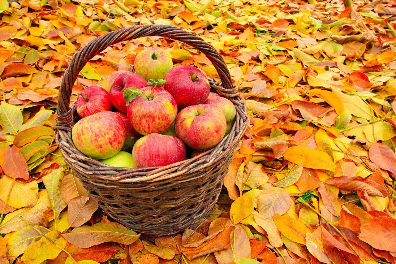 Три спаса в августе: яблочный, медовый, ореховый, когда будут в 2021